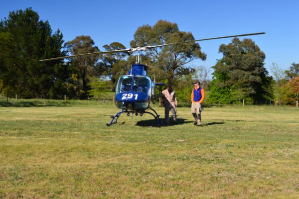 wingecarribee-swamp-ariel-inspection-preparation-kangaloon-nsw